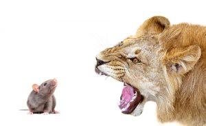 Weet jouw partner het waardoor jij heftig reageert? Weten jullie wat je ieder doet om elkaars heftige reactie op te roepen en te versterken?
